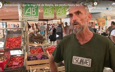 JT Via Stella du 12/08/19: Marché de Bastia, les maraîchers Bio à l'honneur…